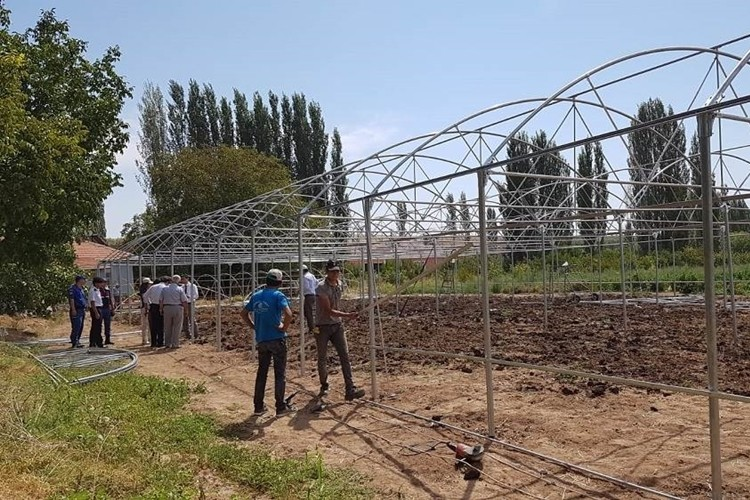 Kaman'da Örtüaltı Üretimi Desteklerle Artacak