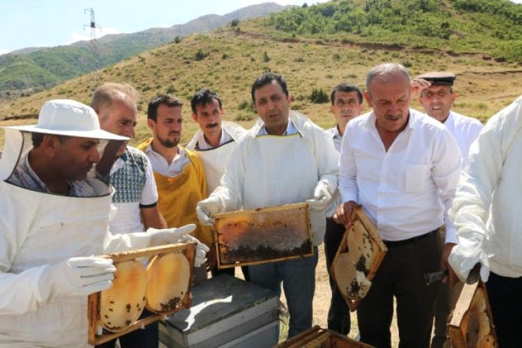 Siirt'te Yılın İlk Balı Toplandı