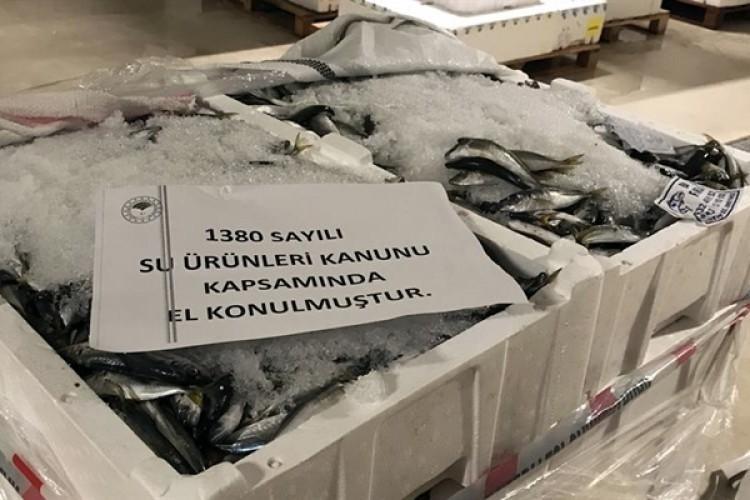 Gece Yarısı Denetimle 53 Ton Balığa El Konuldu