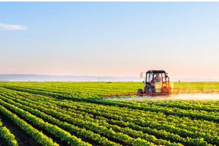 Tarım Sigortaları 2020 Yılı Uygulamaları Açıklandı