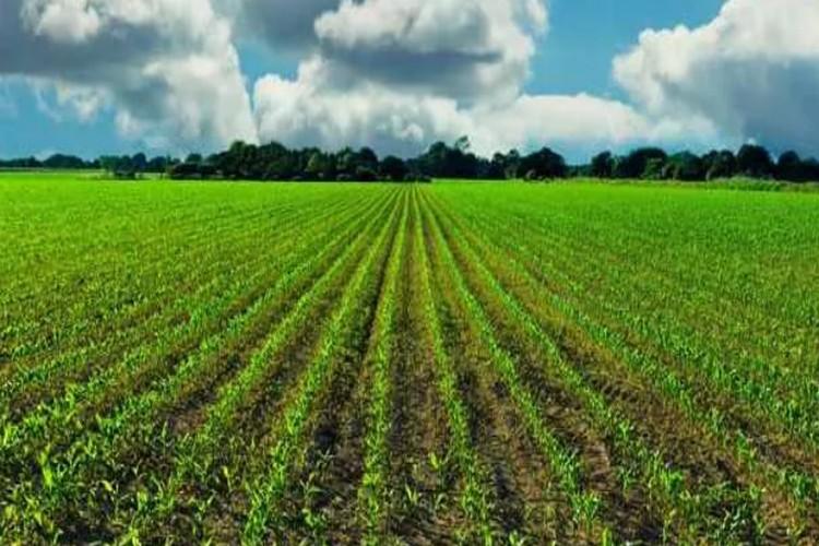 Tarımın geleceği masaya yatırılıyor