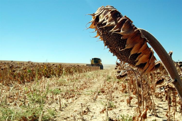 Keven: Çiftçiler Git Gide Yoksullaşıyor