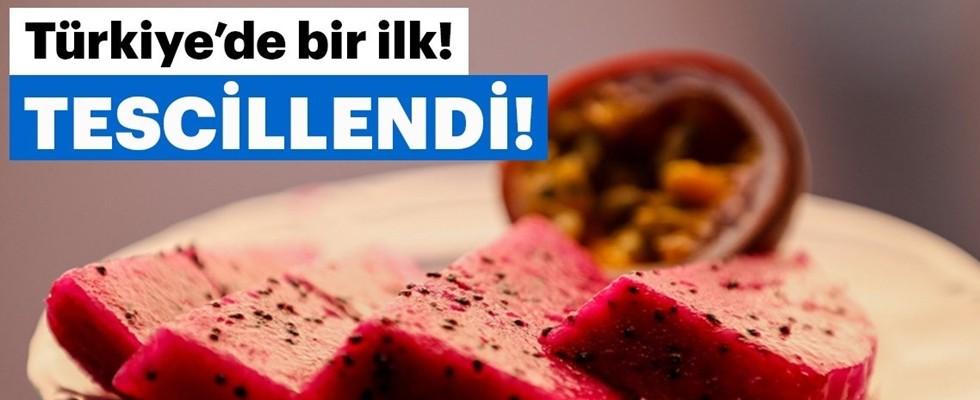 Türkiye'nin Tescillenen İlk Tropikal Meyvesi