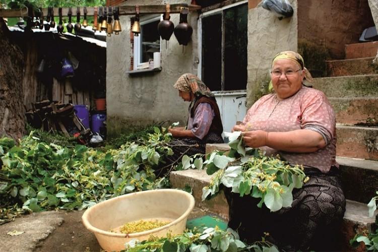 Büyükşehir Belediyesi'nden Kadın Çiftçiler Günü Etkinliği