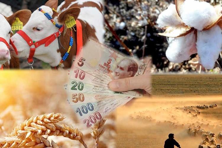 2019 Tarımsal destek ödemeleri ne zaman verilecek? İşte son gelişmeler...