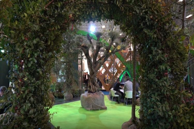 İstanbul, 14-16 Kasim'da Yeşile Doyacak !