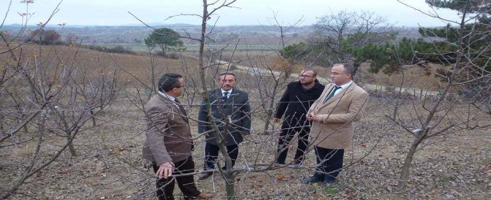Taşköprü'de Genç Çiftçi Proje Kontrolleri Yapıldı