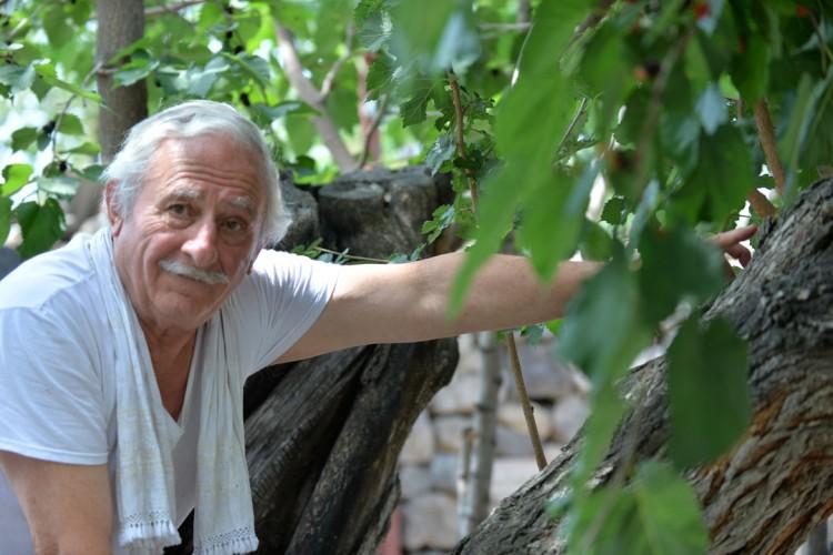 """Kaybolmaya Yüz Tutmuş Üç Asırlık Lezzet """"Karadut"""""""