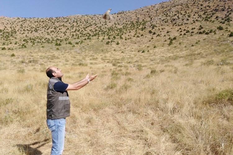 Kafes Avcılarına Hem Ceza Kesildi Hem de Tazminat Talep Edildi