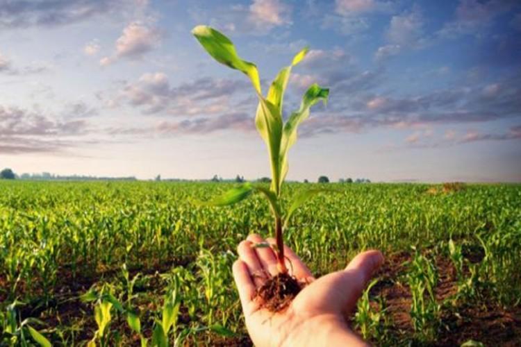 Tarımsal Yayım Ve Danışmanlık Sınavı Başvuru Süresi Uzatıldı