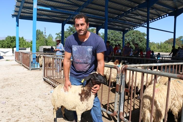 Erzincan'da Genç Çiftçiler Koyunlarına Kavuştu