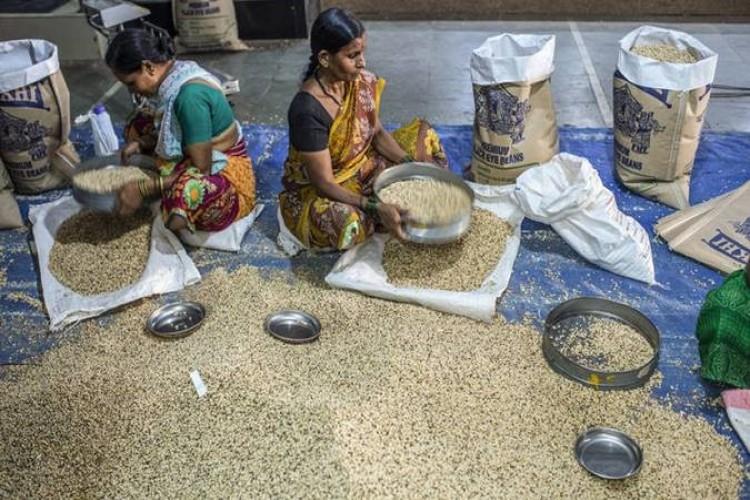 FAO Gıda Fiyat Endeksi güçlü arz sonucu Eylül'de düşük seyretti