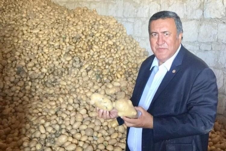 """Gürer: """"Patates Ve Soğanın İhracı Engellenerek Sorun Çözülemez"""""""