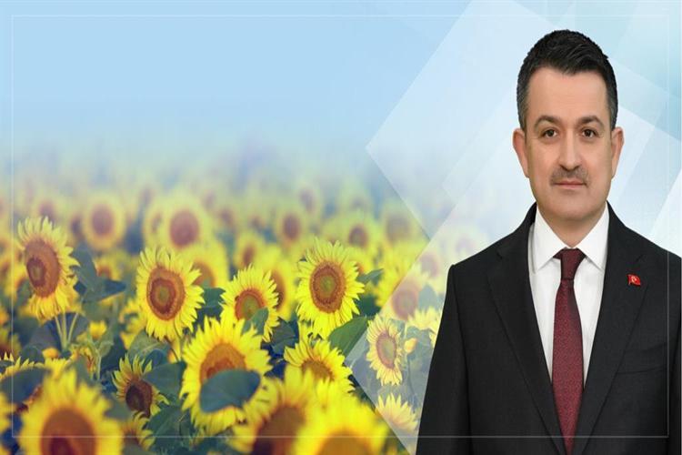 Bakan Pakdemirli Ayçiçeği Alım Fiyatını  Açıkladı