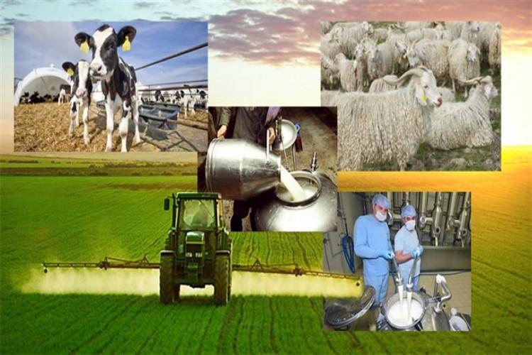 358 Milyon 204 bin lira tarımsal destek bugün ödeniyor