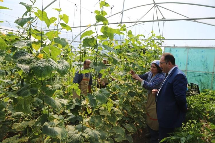 Bursa 'Tarımla Engellerimizi Aşıyoruz Projesi' İle Rol Model Olacak