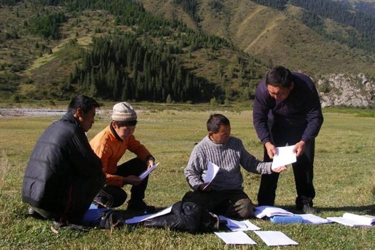 Orta Asya'da Ormanları Korumak İçin Yeni Programın Yol Haritasında Sona Geliniyor