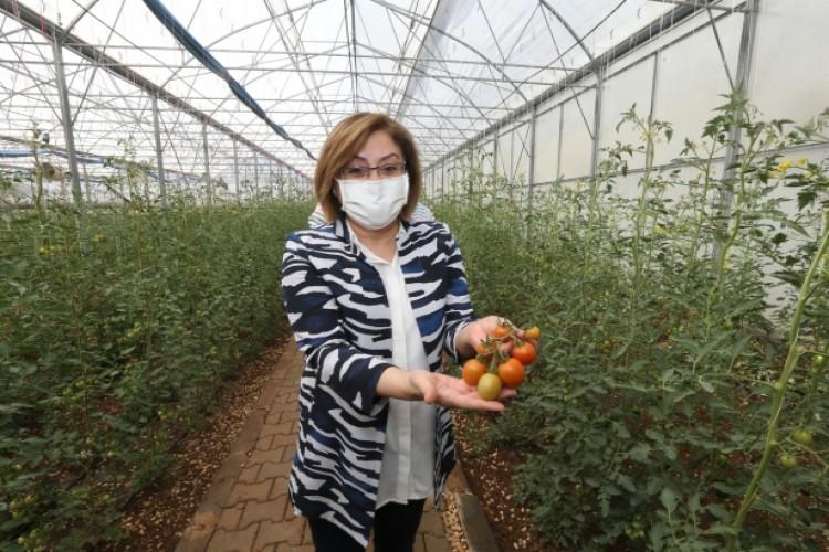 Tarımsal Eğitim ve Yöresel Ürünler İşleme Merkezi İlk Ürününü Verdi