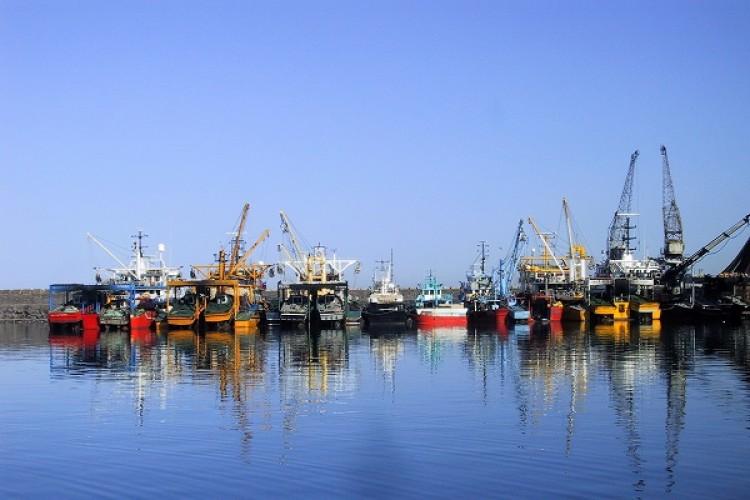 Su Ürünleri Genel Av Yasakları 15 Nisanda Başlıyor