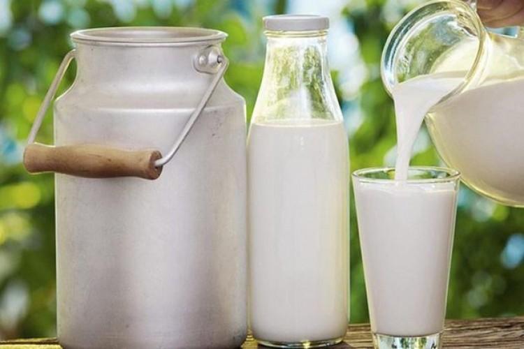Toplanan İnek Sütü Miktarı Yüzde 0,6 Oranında Azaldı