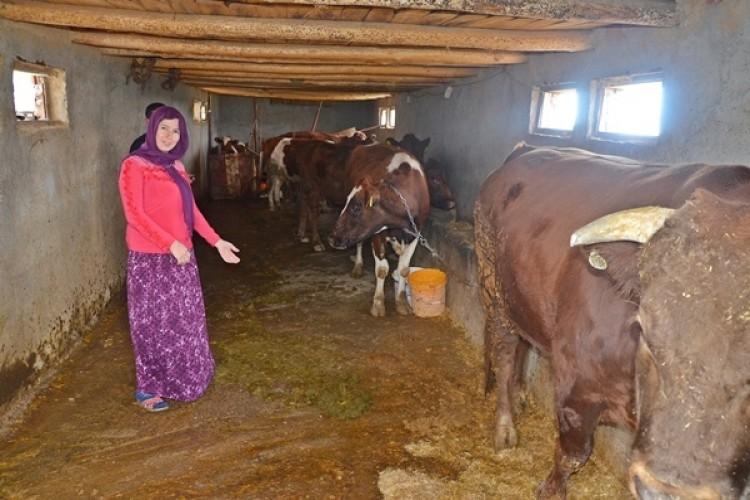 """Devlet Desteği Genç Çiftçilere Adeta """"Umut"""" Kapısı Oldu"""