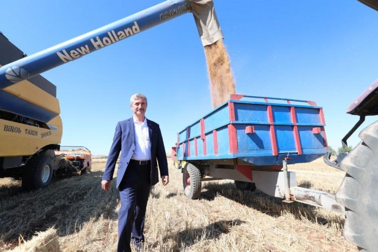 Başkan Tahmazoğlu Ekimini Yaptığı Buğdayların Hasat Sevincine Ortak Oldu