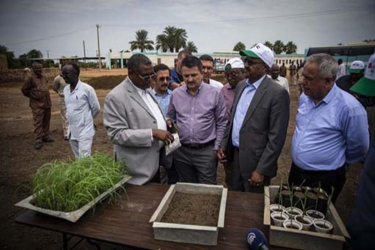 Bakan Pakdemirli: Sudan'da örnek çiftlik ve örnek üretim yapacağız