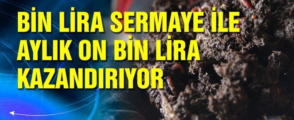 Bin Lira Sermaye İle Aylık On Bin Lira Kazandırıyor