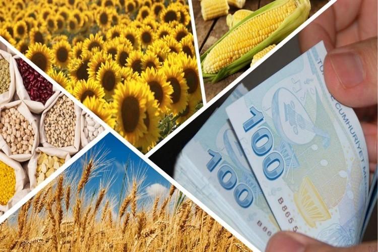 Yağlı Tohumlu Bitkiler Fark Ödemesi İle Hububat, Baklagil Ve Dane Mısır Desteği Bugün Ödeniyor