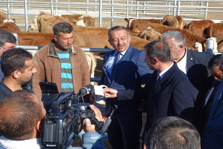 Çorum'da Genç Çiftçiler Büyükbaş Hayvanlarını Teslim Aldı