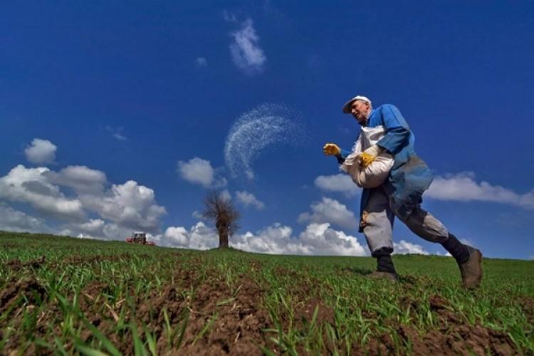 Devlet destekli tarım sigortalarında toplam sigorta bedeli %39,3 arttı