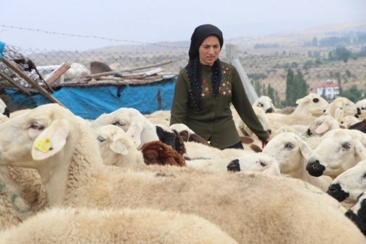 Kadın Çiftçi Hibe Desteği İle Başladı, Şimdi Çiftlik Kurdu