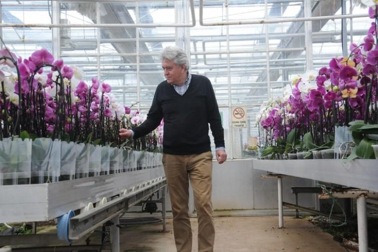Orkide Üretimiyle Yıllık 15 Milyon Euroluk İthalatı Durdurdu