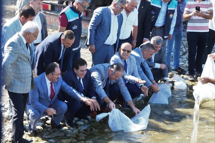500 Bin Yavru Sazan İznik Gölü ile Buluştu