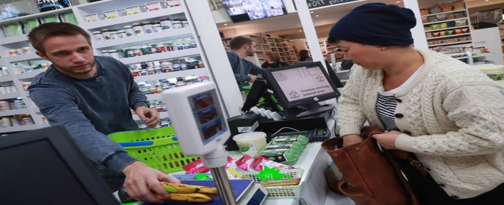 Muz Üretimine Yönelik Tehditler İstanbul'daki Çalıştayda Ele Alındı