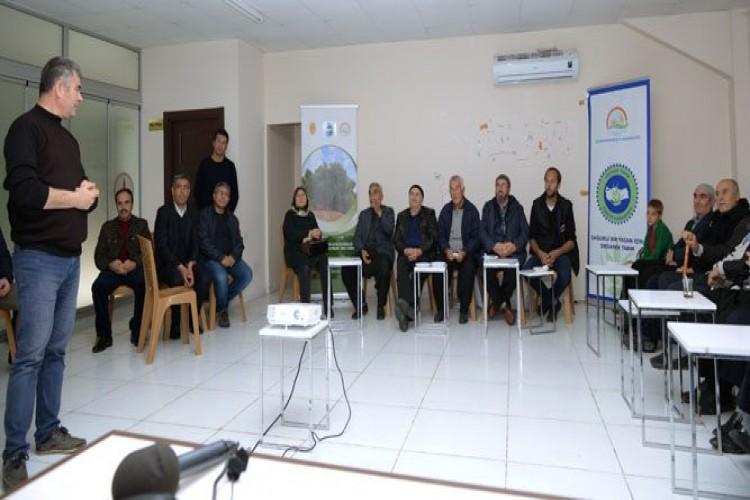 Kahramanmaraş'ta Organik Zeytin Yetiştiriciliği Başlıyor