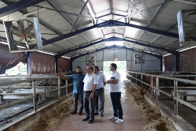 Düzce'de 14 Kırsal Kalkınma Projesi Faaliyete Geçiyor