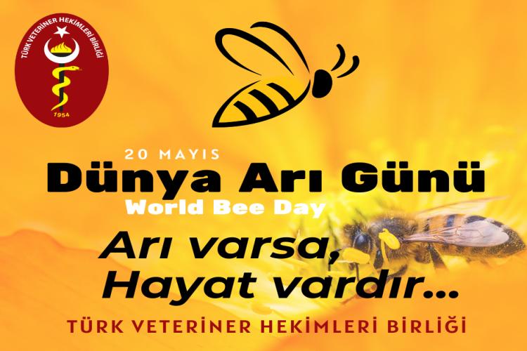 TVHB: Arılar yaşam demek, arı varsa hayat var