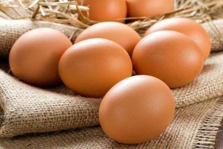 Tavuk Yumurtası Ve Et Üretimi Arttı