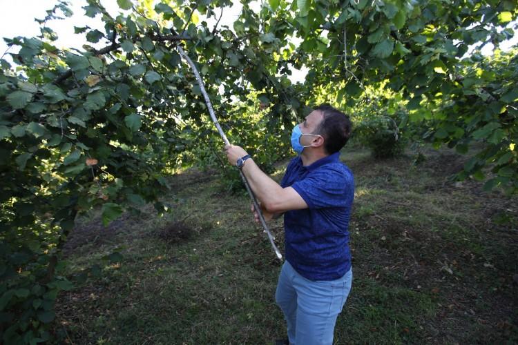 Tüm üreticilerimize bol ve bereketli bir hasat sezonu diliyoruzsezonu diliyoruz