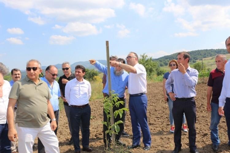 Yalova'da Üreticilere Tarımsal Projelerle Destek Veriliyor