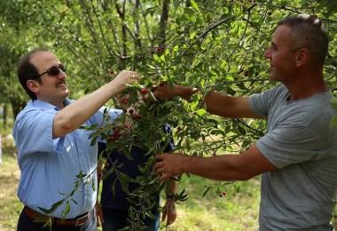 Vali Pehlivan: Bayburt meyvecilik alanında da 'Ben de varım' diyebilsin