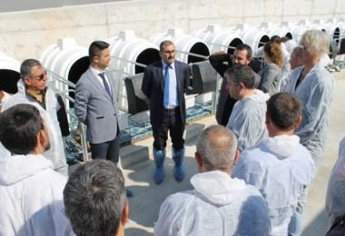 Uşak'ta Besi Sığırcılığı Kursiyerlerine Uygulamalı Eğitim yapıldı