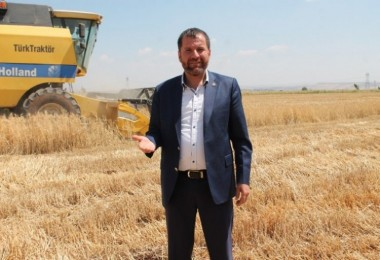 Diyarbakır'da Yılın İlk Buğday Hasadı Yapıldı