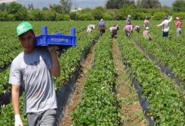 Çiftçilerin Kredi Borç Faizlerinin Silinmesini Teklif Etti