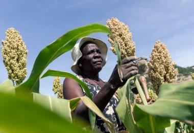 Küresel Salgın Nedeniyle Afrika'ya Acil Yardım Koridoru