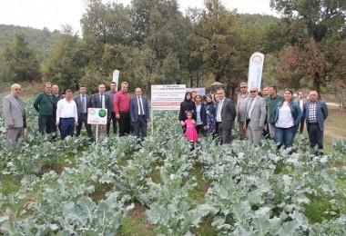 Kadın Çiftçilere Yeni Brokoli Çeşitleri Tanıtıldı