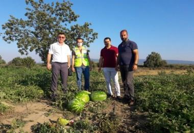 Mustafakemalpaşa'lı çiftçinin yüzü yeni gelir kaynaklarıyla gülecek