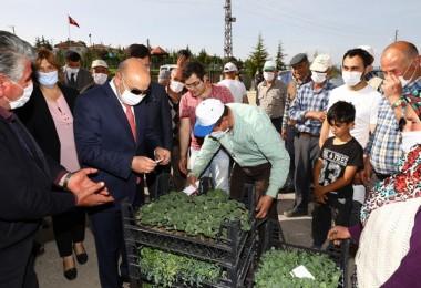 Keçiören Belediyesinden yerli sebze üretimi için çiftçilere büyük destek