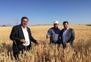 """Gürer: """"Buğday alım ton fiyatı 1500 lira olmalıydı"""""""